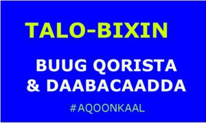 talobixin-buug